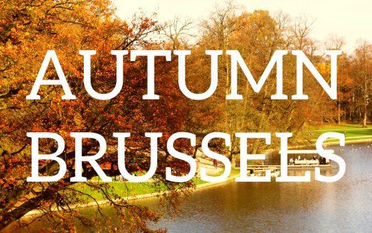 Culture et vie à Bruxelles